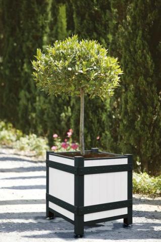 flower-boxes-bl4-white-france
