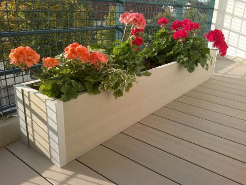 bacs-a-fleurs-db1-provence-leipzig-allemagne